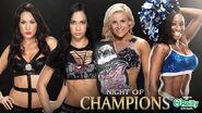 NOC 2013 Divas match