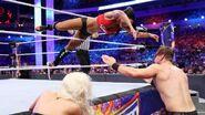 WrestleMania 33.73