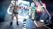 WrestleMania Revenge Tour 2013 - Dublin.9
