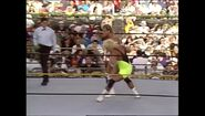 WrestleMania IX.00035