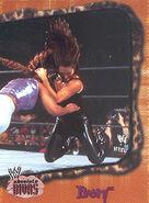 2002 WWE Absolute Divas (Fleer) Ivory 38