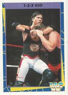 1995 WWF Wrestling Trading Cards (Merlin) 1-2-3 Kid 96