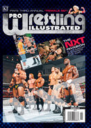Pro Wrestling Illustrated - November 2010