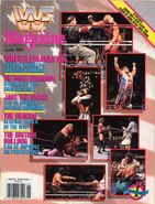 June 1991 - Vol. 10, No. 6