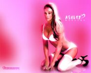 Ashley Massaro 8