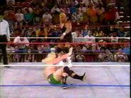 July 5, 1993 Monday Night RAW.00022