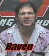 Raven 39