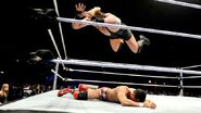 WrestleMania Revenge Tour 2013 - Birmingham.5
