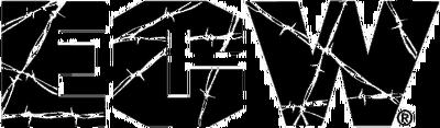 Ecw logo2001
