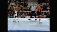 SummerSlam 1993.00013