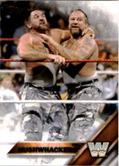 2016 WWE (Topps) The Bushwhackers 58
