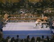 1.16.88 WWF Superstars.00001