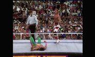 WrestleMania VIII.00005