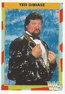 1995 WWF Wrestling Trading Cards (Merlin) Ted Dibiase 14