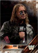 2016 WWE (Topps) Bret Hart 82