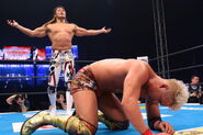 Wrestle Kingdom IX 3