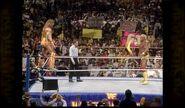 Hogan vs. Warrior 12