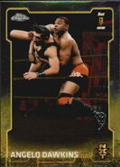 2015 Chrome WWE Wrestling Cards (Topps) Angelo Dawkins 93