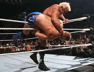 Royal Rumble 2007.30