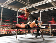 HBK V HHH Hell-in-a-Cell 04 2