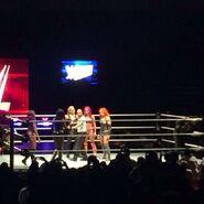 WWE House Show (February 13, 16') 3