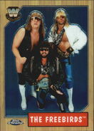 2008 WWE Heritage III Chrome Trading Cards The Freebirds 75