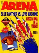 Arena de Lucha Libre 7