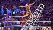 WrestleMania 33.64