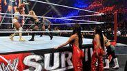 Survivor Series 2011 5