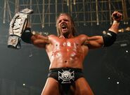Triple-h-wwf-champ