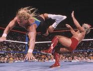 SummerSlam 1989-1