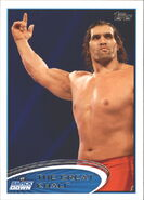 2012 WWE (Topps) The Great Khali 28
