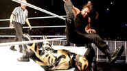 WWE World Tour 2013 - Dublin.3