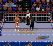 WWF Rage in the Cage (Game).4