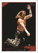 2009 WWE (Topps) Shawn Michaels 60