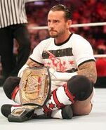 WWE0001 CM Punk WWE Champion