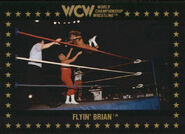 1991 WCW Collectible Trading Cards (Championship Marketing) Flyin' Brian 62