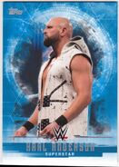 2017 WWE Undisputed Wrestling Cards (Topps) Karl Anderson 19