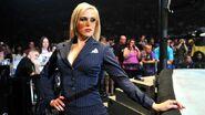 WWE WrestleMania Revenge Tour 2014 - Nottingham.6