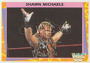 1995 WWF Wrestling Trading Cards (Merlin) Shawn Michaels 130