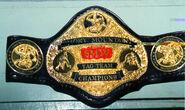Smokey Mountain Tag Team Champion