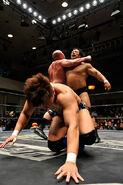 DDT Sweet Dreams 2015 6
