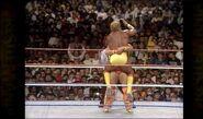Hogan vs. Warrior 16