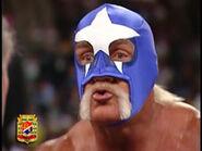 Hulk Hogan 11