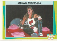 1995 WWF Wrestling Trading Cards (Merlin) Shawn Michaels 175