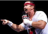 Terry Funk 10