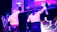 Kane and Undertaker as champions