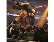 WrestleMania 23.31