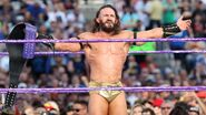 WrestleMania 33.9