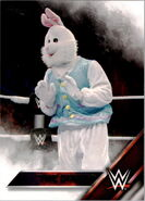 2016 WWE (Topps) The Bunny 11